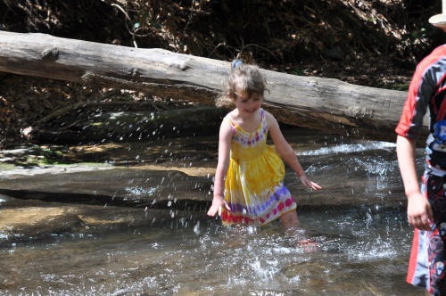 Little Feet in Cold Creeks